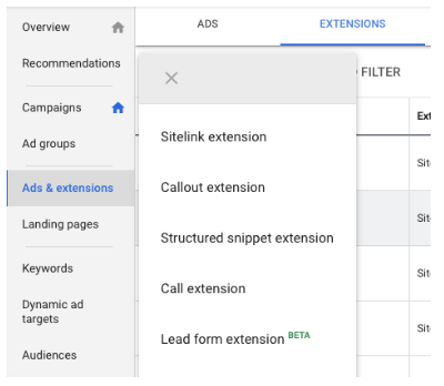 Visualisation of Google Search Lead Form Extension in search results page